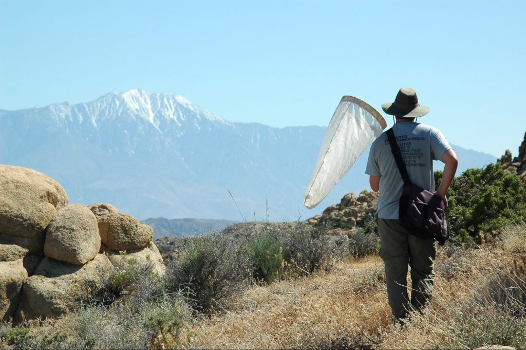 Dr. Jeff Lozier on a collection expedition to the Burns Pinon Reserve with the Essig Museum of Entomology, UC Berkeley, 2005.